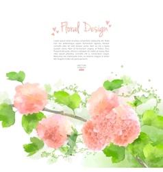 Watercolor Flowers Hydrangea vector image vector image