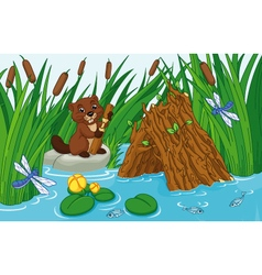 Beaver lodge vector