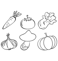Doodle designs of different vegetables vector image