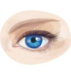 Eye blue vector