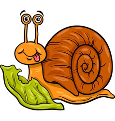 snail and lettuce cartoon vector image