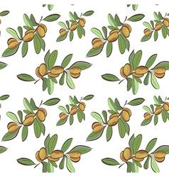 Seamless flat argan fruits pattern vector