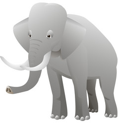 Isolated elephant on white background vector