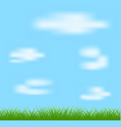 natural green grass and blue background vector image