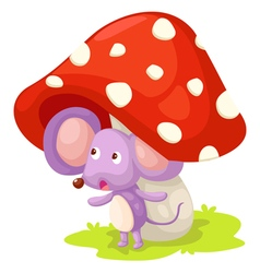 Rat with mushroom vector