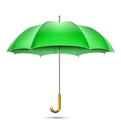 Realistic Detailed Green Umbrella vector image