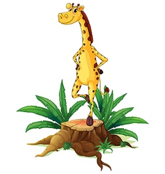 A giraffe standing above a chopped wood vector