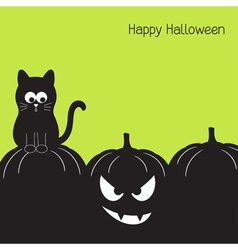 Black cat and Halloween pumpkin vector image