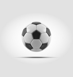 soccer ball realistic soccer ball or vector image vector image