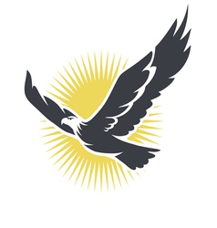 eagle on a background of the sun vector image