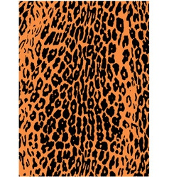 leopard pattern background vector image vector image