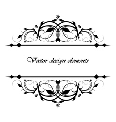 calligraphic patterns vector image