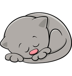Sleeping kitten cartoon vector