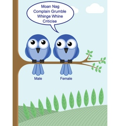 gender of birds vector image