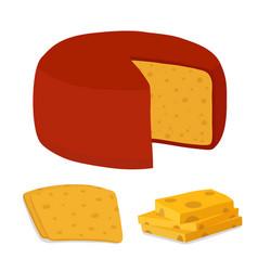 Gouda cheese blockpiececartoon flat style vector