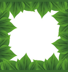Frame of leaves vector
