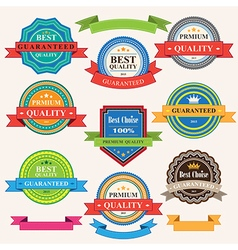 Set of vintage badges and labels vector image