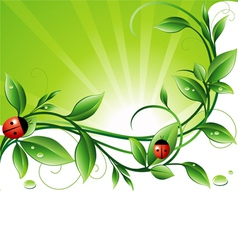 Green backround vector