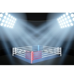 Night boxing prize ring vector