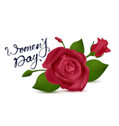 Womens day lettering text for greeting card red vector