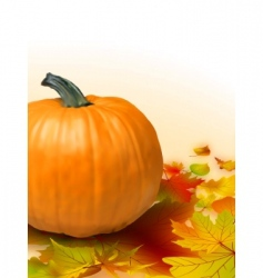 Fall vegetables vector