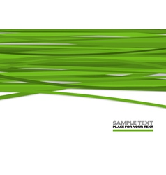 Green stripes vector image vector image