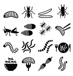 Edible worms and insects icons - alternative sourc vector