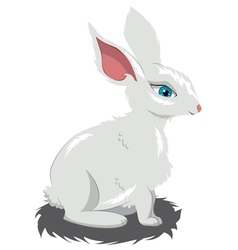 Cute White Rabbit vector image vector image