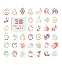 set of fruits and berries icons vector image