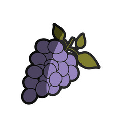 Light coloured silhouette of bunch of grapes with vector