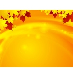 Orange autumn maple leaves and waves vector
