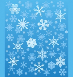 snowflakes background winter vector image