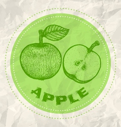 apple vintage paper vector image