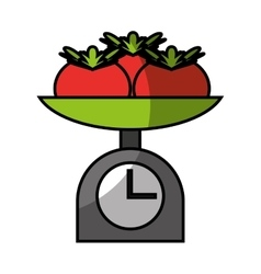 balance with tomatoes isolated vector image vector image