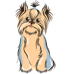 Yorkshiere terrier sketch vector