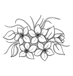 black-and-white bouquet of flowers with leaves and vector image