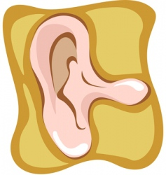 ear vector image