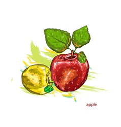 apples with colorful splashes vector image vector image