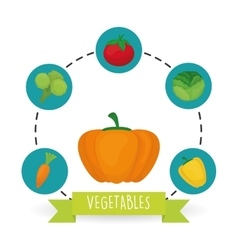 Vegetable design over white background vector image vector image