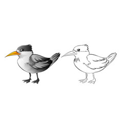 animal outline for wild bird vector image vector image