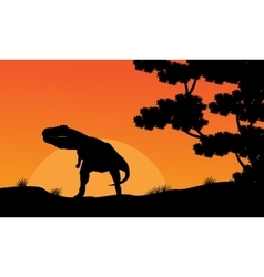 Silhouette of Tyrannosaurus at the sunset scenery vector image vector image