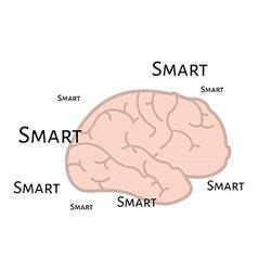 Smart brain vector image