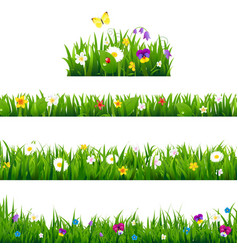 big set flowers borders vector image