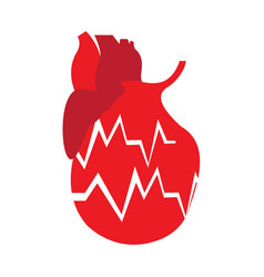Isolated heart and cardiogram vector