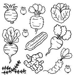 Hand draw of vegetables doodles vector