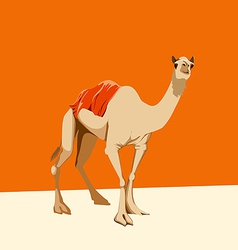 Camel on an orange background vector
