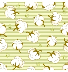 Seamless pattern with cotton plant vector