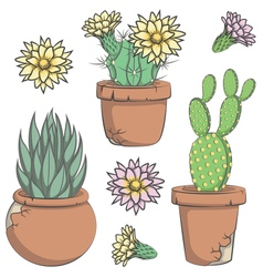 Set of colored cactus with flowers in old pots vector