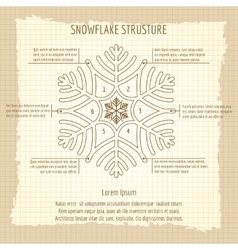 Snowflake structure vintage poster vector image vector image