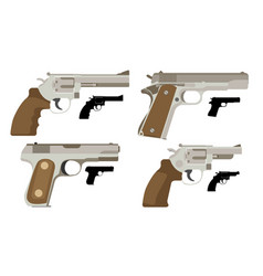 gun set icon flat vector image